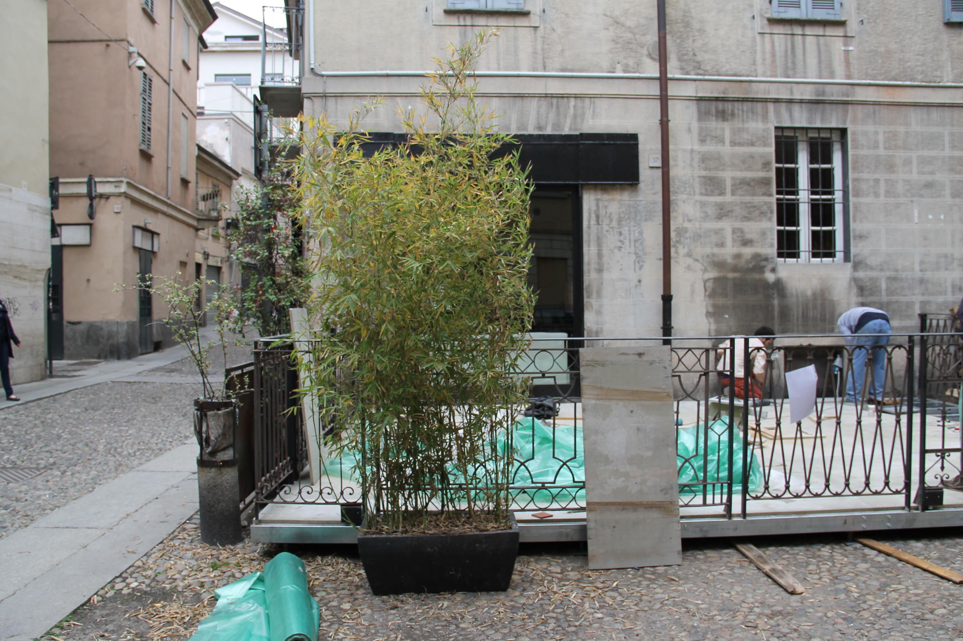 Massetto a secco esterno in cementolegno BetonWood Dehors Pavia
